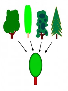 Generalization_process_using_trees_PNG_version