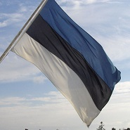 Estonian_flag_sm